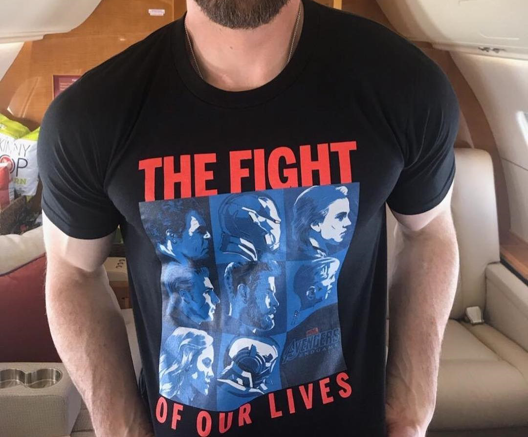 Marvel Avengers Endgame the fight of our lives shirt