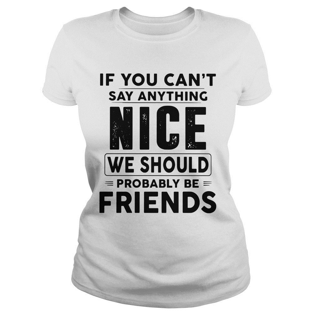 If You Can't Say Anything Nice We Should Probably Be Friends Shirt